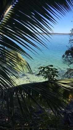 #noosa #beach #sunshinecoast #walk #favspot #australia