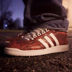 Adidas Concord Snakeskin