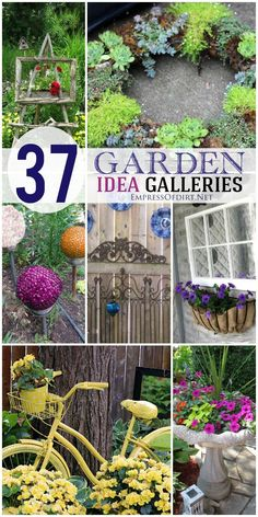 Galleries of garden and garden art ideas including DIY projects, sheds, birdhouses, garden balls, garden junk, and more.