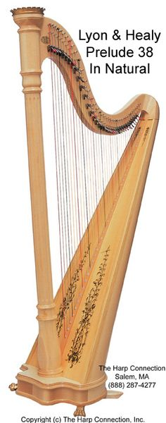 Very nice!   Beautiful craftwork :) Waiting on the arrival of my new harp - Lyon & Healy Prelude