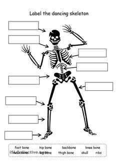 Digestive system labeling worksheet answers human skeleton label the skeleton ccuart Images