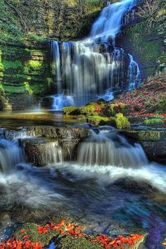 Scaleber Force, Yorkshire ~ Dales National Park, England. #nature #waterfall #flowers