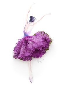 Ballet Dance. Real Flowers in Drawings of Dresses. By Limzy.