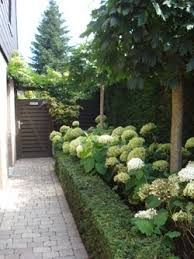 Image result for wintergroene tuin