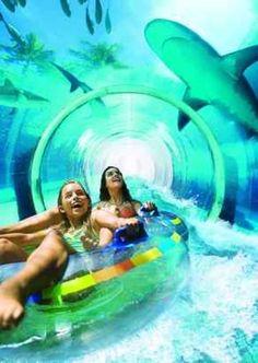 Atlantis Bahamas Resort, Paradise Island, Serpent Water Slide through the shark tank