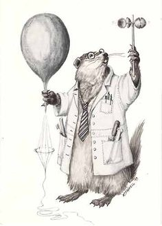 Groundhog Scientist, by Karen Farrell