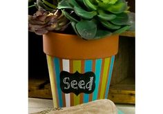 Chalkboard Label Striped Rose Pot made with Handmade Charlotte Peel & Stick stencils available to buy in-store at major craft retailers #crafts #plaidcrafts #diy