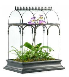 wardian case, terrarium