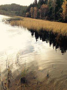 naturensdronning: Vakker natur på nordvestlandet
