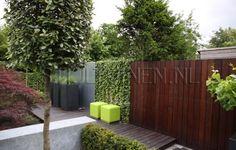 afwisselende tuinafscheiding hout en groen