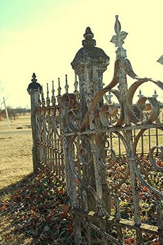 old iron gate by rhonda gibson, Iron Fence Gate, Fence Gate Design, Wrought Iron Fences, Halloween Fence, Old Gates, Garden Gates And Fencing, Gothic Garden, Iron Work, Gothic House