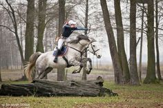 Horseback Archery: Strength, Courage and Precision at Full-Gallop Archery Photography, Archery Girl, Archery Hunting, Deer Hunting, Mounted Archery, You Draw, Horse Pictures, Horse Girl, Horseback Riding