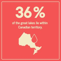Design a basic infographic with facts with this customizable Geography Statistical Infographic Template. Explore Venngage for more statistical infographic templates! Free Infographic, Infographic Templates, Focus On Yourself, Data Visualization, Statistics, Geography, Storytelling, Charts, Layout