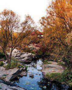 #осень #радомышль #river #moodygrams  #500px #artofvisuals #featuremeinstagood #colorist #colores #illmatic_features #житомирскаяобласть #aov #tree #холода #инстаграмнедели #vscogoodshot #mobilemag #vscogood_ #exklusive_shot #teamvl #instagram #ukrainemy #hdr #aovmobile #view #foto_ukraine #agameoftones #typical_ua #nature #ukraine_my