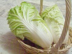 How to Grow Chinese Cabbage | Garden Guides