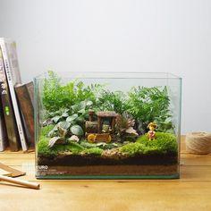 屿路生活 中秋节教师节 苔藓微景观 生态瓶 原创绿植 创意礼品