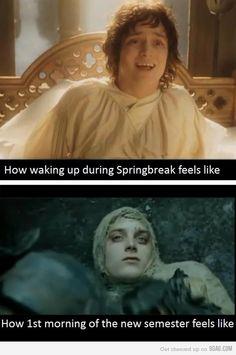 Waking up during Spring Break