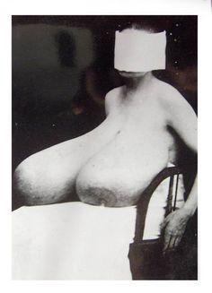 erotic oddities
