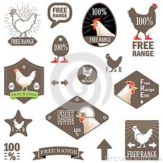 Vector Illustration. Set of Vector Labels: Free Range Chicken. Design of Stamp for Eco Products. Concept for Organic Food Items. Funny Chicken Stickers