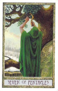 Seven of Pentacles.    In the DruidCraft Tarot, each suit is associated with a season.  For the suit of Pentacles, this is Winter.  So, instead of the traditional image of someone leaning on a hoe watching plants, we have the seasonally appropriate picture of a figure harvesting mistletoe.  Still, the idea of having to put in work to reap the harvest - in this case going out in winter to find the mistletoe and harvest it from high up in a tree - is clearly present, as is the idea that things…