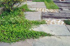花壇・ロックガーデン・ハーブガーデン 植栽 外構パーツ施工事例集|外構工事・お庭・エクステリアは神戸・西宮・三田のフィーリングガーデン 坂林盛樹園