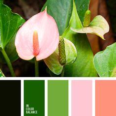 гамма для свадьбы, зеленый, нежный зеленый, нежный розовый, оранжевый, оттенки зеленого, оттенки розового, палитра для свадьбы, персиковый, подбор цвета, розовый, салатовый, теплый розовые, цвет зелени, цвет зеленых листьев, цвета лета 2018.
