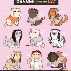 Orange is the new black lol