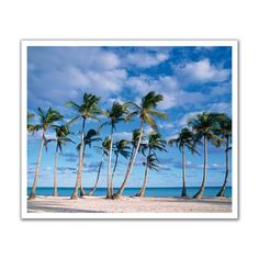J.P. London Design, Inc. POS2052 Wind Swing Palm Tree Tropical Beach Peel and Stick Removable Wall Decal Mural