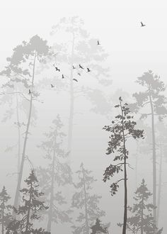 Foggy Forest, poster in the group Poster / Naturmotive bei .- Foggy Forest, Poster in der Gruppe Poster / Naturmotive bei Desenio AB Foggy Forest, poster in the group Poster / nature motifs at Desenio AB - Foggy Forest, Desenio Posters, Groups Poster, Minimalist Home Decor, Minimalist Kitchen, Minimalist Interior, Minimalist Living, Minimalist Bedroom, Foto Poster