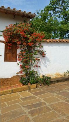 Casas de Barichara Roads And Streets, Colombia Travel, American Country, Gerbera, Small Towns, Flower Art, Ideas Para, Paths, Sidewalk
