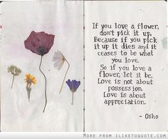 So if you love a flower, let it be. Love is not about possession. Love is about appreciation.