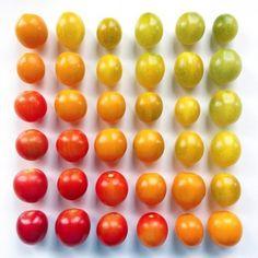 kleurrijke kunstwerken van voedsel Brittany Wright