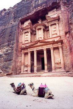architecture in Petra, Ma'an, JO. Places Around The World, Oh The Places You'll Go, Travel Around The World, Great Places, Places To Travel, Places To Visit, Around The Worlds, Beautiful World, Beautiful Places