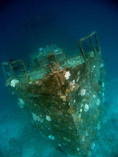 Sunken Ship, The Maldives