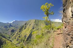 Vue sur Mafate depuis les hauts de Dos d'Ane