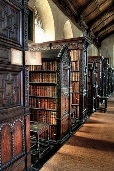 LIBRARIES: I would love to visit a library like this.