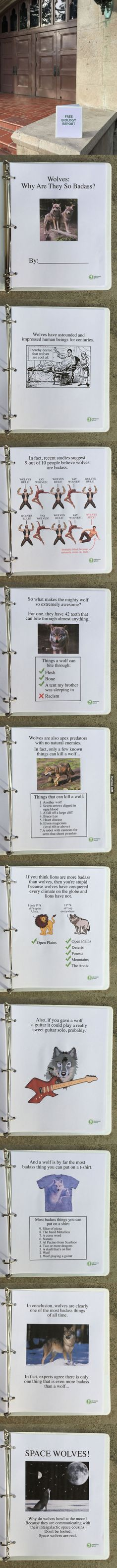 A guy left this free biology report about wolves outside a Los Angeles high school - 9GAG