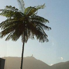 Describe tu pin...Caracas contraste