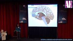 Taller Inteligencia Emocional II - Nse. Marita Castro - Neurociencias
