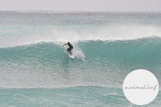 tanegashima wave