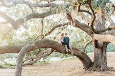 Tampa Wedding Photographer, St Pete Wedding Photographer, Phillipe Park Engagement Session, Sarasota Photographer