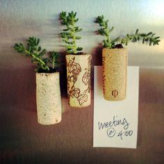 DIY     Succulent Wine Corks | POPSUGAR Smart Living  spray painted sparkly or gold