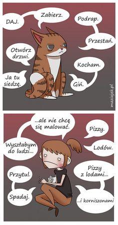 #kot #koty #polska #poland #cats #komiks #humor #kobieta #kobiety