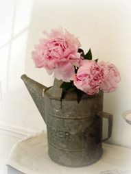 peonies and weathered watering can