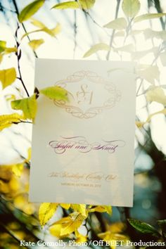indian wedding cards http://maharaniweddings.com/gallery/photo/8400