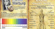 Dr. Otto Heinrich Warburg foi um dos maiores nomes da medicina no século 20.