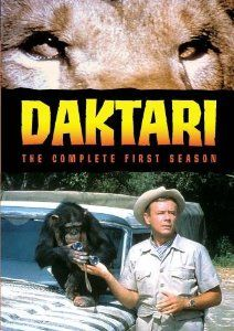 Daktari !!  With Clarence the cross-eyed lion.