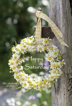Happy Sarurday! ❤️