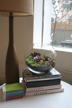 Terrarium en pecera de cristal Super facil