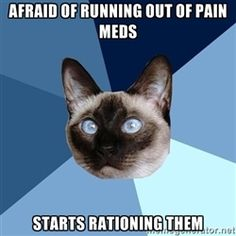Chronic Illness Cat - Afraid of running out of pain meds starts rationing them